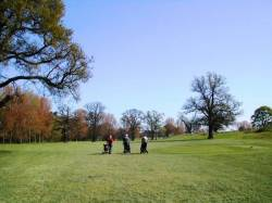 7th Hole: The Fairway